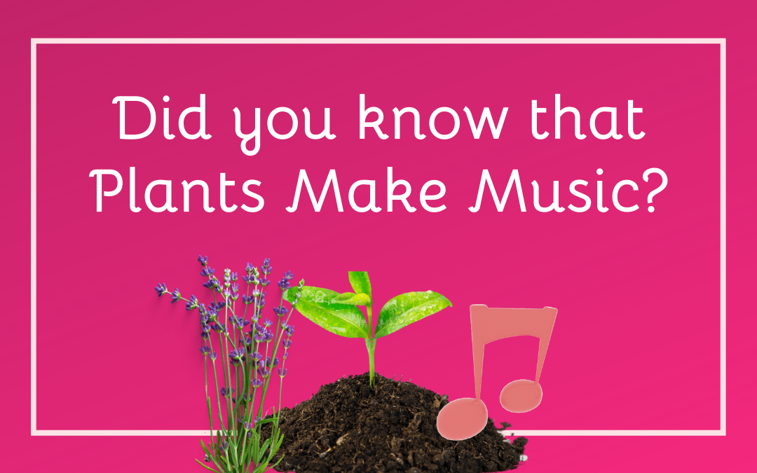 Did you Know that Plants Make Music